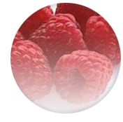 Red Raspberry Juice Extract